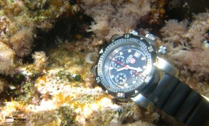 cx_Swiss_Military_1000_Argonaut_Submerged