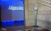Hublot_Decoration_Musee_Oceanographique_Monaco_2013