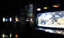 Hublot_Exhibition_Musee_Oceanographique_Monaco_2013