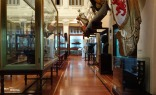 Museo_Naval_Impressions_2_Madrid_2015